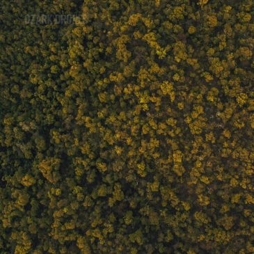 Ozark Drones Featured on Unsplash