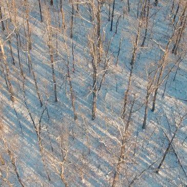 Snow in Arkansas Aerial Video