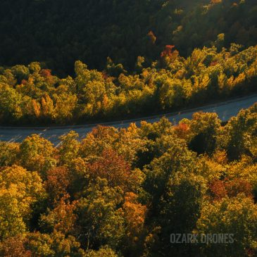 Drone Video of Fall Leaves in Arkansas