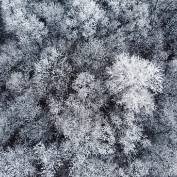 Winter Drone Footage