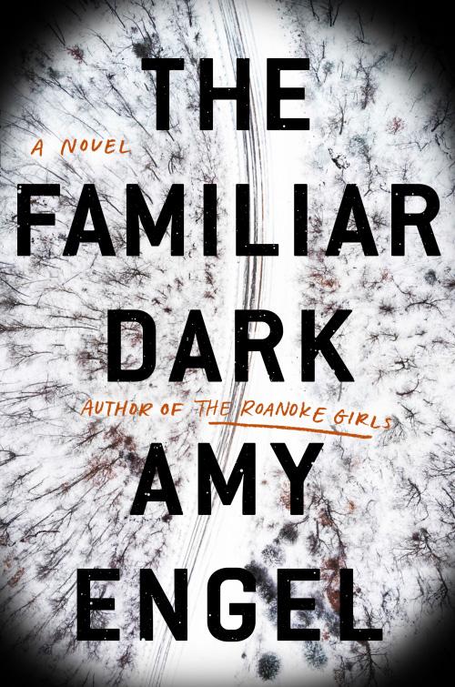 The Familiar Dark Book Cover Image
